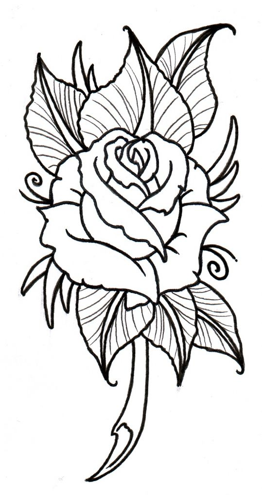 Rose Design Drawing Roses Drawing Flower Outline Rose Embroidery Pattern