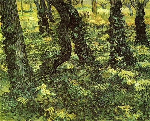 Trunks of Trees with Ivy  - Vincent van Gogh