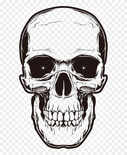 17 Angry Skull Png Png Drawing Com Skull Skull Illustration Skull Silhouette