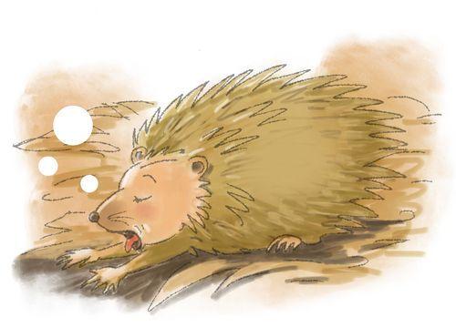 Morgenkreisgeschichte Vom Kleinen Igel Der Nie Besuch Bekam Klett Kita Blog Kleine Geschichten Fur Kinder Geschichten Fur Kinder Igel Im Winter