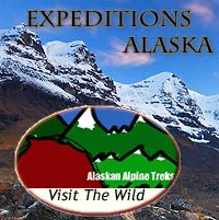 Expeditions Alaska - bears and aurora borealis