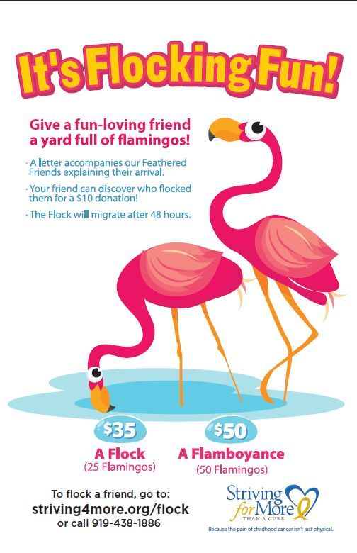 flamingo fundraiser flyer
