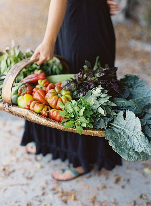 A basket full of freshly picked produce