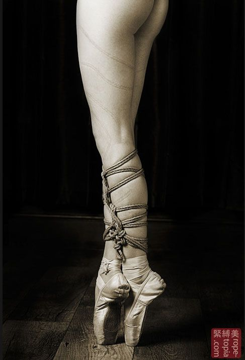 Bondage - Shibari photography art... I'm not into bondage but I like this photo