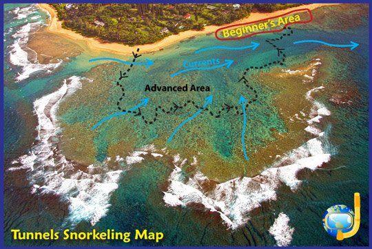 Kauai Travel Snorkeling
