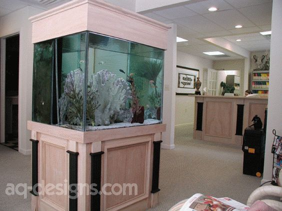 100 gallon aquarium with a 4 sided view at a dentist in West Little Rock.