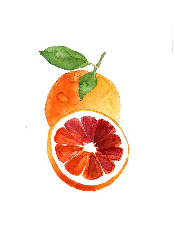 Blood orange study number three  original watercolor painting, citrus,  Botanical painting, Kitchen art, minimalist, orange green