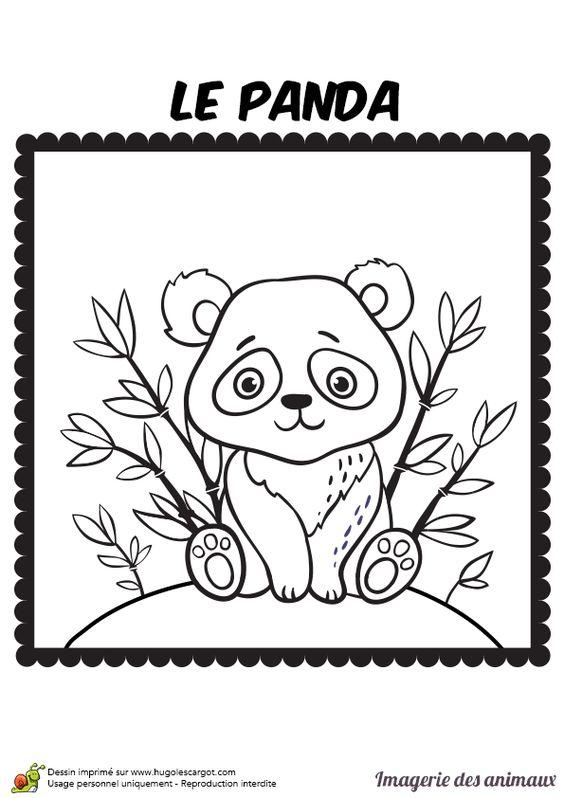 Coloriage imagerie des animaux le panda hugolescargot - Coloriage panda ...