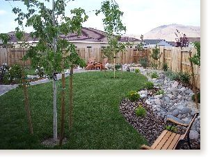 not exactly what I want, but the general idea of xeriscaping around the border of the backyard