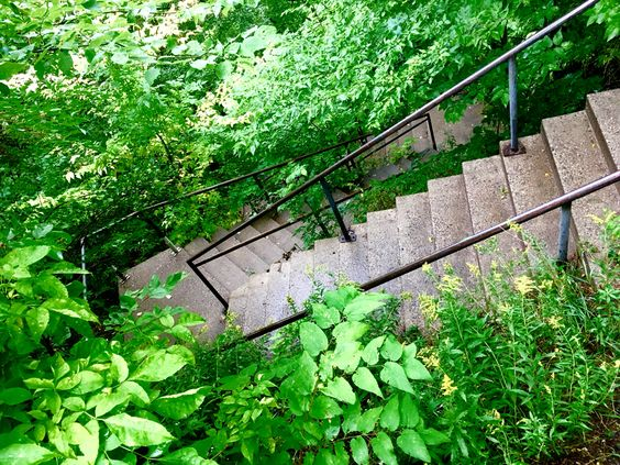 Steps on East River Road down to East River Flats #mylocalmn #eastriverflats #minneapolis