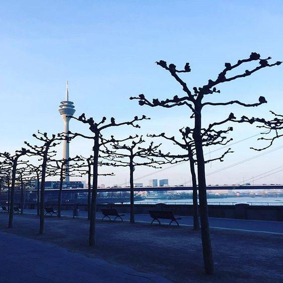 Düsseldorfer Altstadt @duesseldorferaltstadt Wir wünschen euch...Instagram photo   Websta (Webstagram)