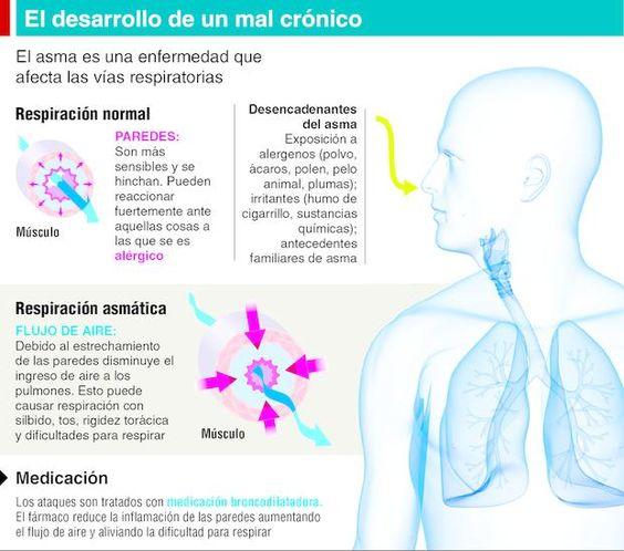 Tratamiento y control, dos claves para frenar al asma Información General