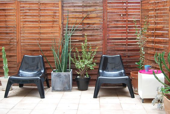 Backyard, potted plants, outdoor chairs