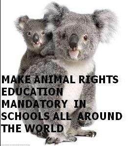 I am a huge animal rights activist, spreading awareness of the importance of adopting, not breeding, anti-cruelty, to campaign against animal AND human abuse!! etc.: