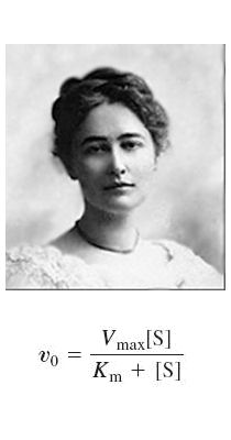 Scientist of the Week 3: Maud Leonora Menten | Crystals And Catalysts Chemistry Blog