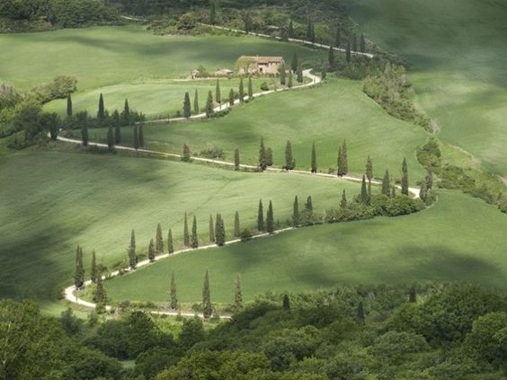 The cyprus-lined road to Siena from Monteverdi in Tuscany | Remodelista: