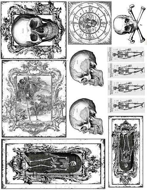 skeleton printables for halloween