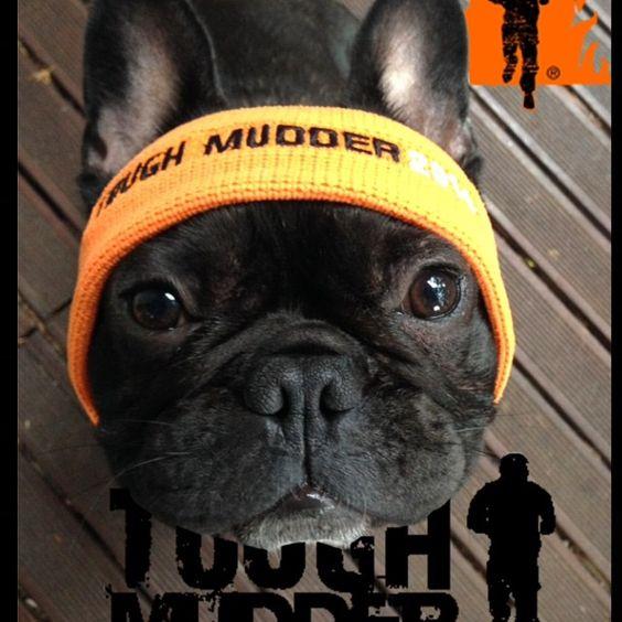 Headbandmondays Toughmudder Toughmudderaustralia By Chowdeur
