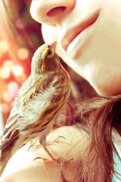 """"""" Tu alma y la mía son uno, respirando como uno, viajando como una sola alma... ॐ """" Rumi"""