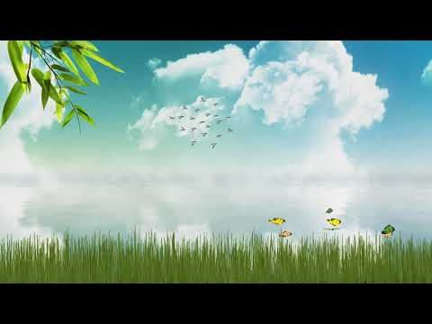 Video Animasi Background Alam No Copyright Youtube In 2020 Background Video Natural Landmarks