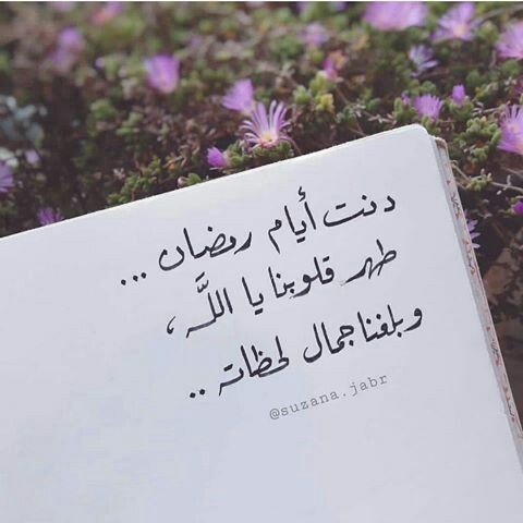 Pin By Abir Bedoui On ضو عيوني Islamic Quotes Words Quotes