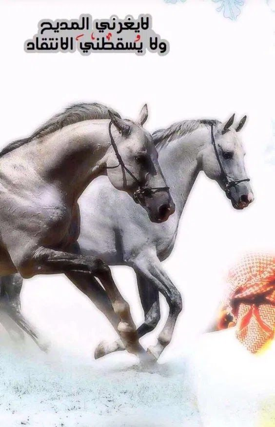 جاليري جنتنا رمزيات كلام عن الخيل 2021 صور خيول مكتوب عليها 2022 In 2021 Arabic Quotes Cool Words Horse Love