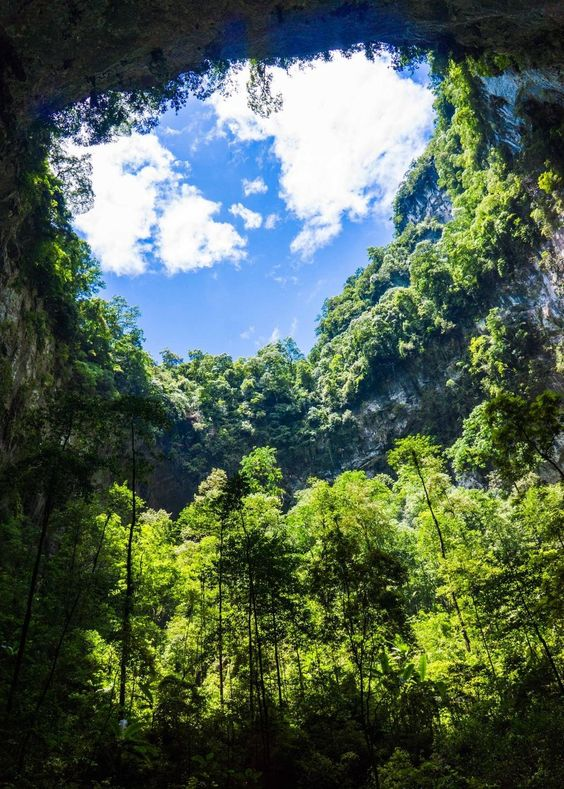Son Doong Cave (Dong Hoi, Vietnam): Address, Attraction Reviews - TripAdvisor
