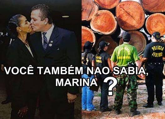 Post  #FALASÉRIO!  : MARIDO DE MARINA... DESVIO DE MOGNO !
