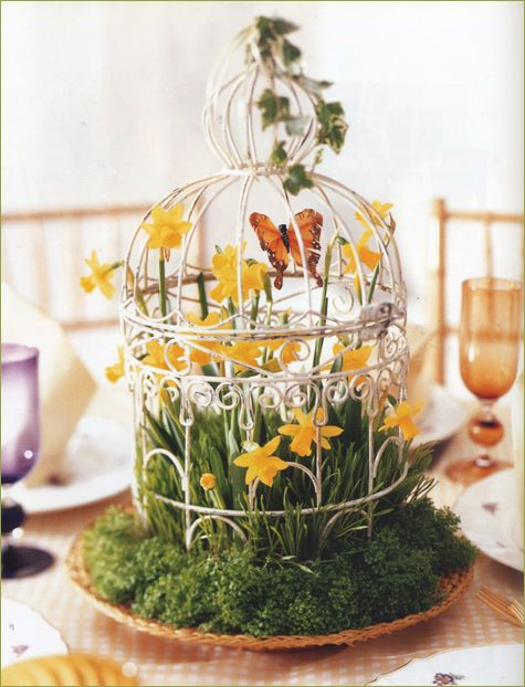 Spring & Summer Party Inspiration  Birdcage ,Flowers & Butterfly  PRETTY !!!:
