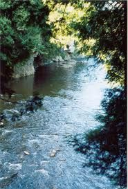 Elora Gorge where Dino proposed to me in 1982