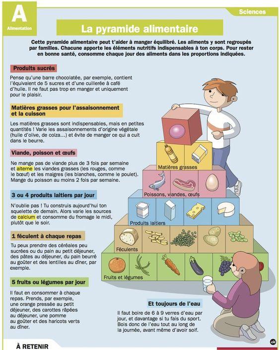 Nutriments de groupe alimentaire