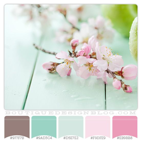 Color inspiration for Haley's house. Main body of the house is the soft pink.