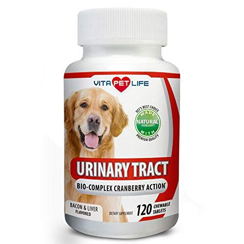Cranberry For Dogs Urinary Tract Support Antioxidants With Apple Cider Vinegar Prevents Uti Bladder Infect Fish Oil Dogs Pet Life Anti Inflammatory Supplements