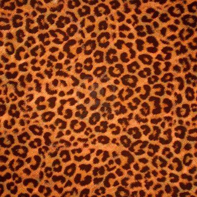 Sfondo Di Pelle Di Leopardo O Trama. Risoluzione Di Grandi Dimensioni Foto Royalty Free, Immagini, Immagini E Archivi Fotografici. Image 8295755.