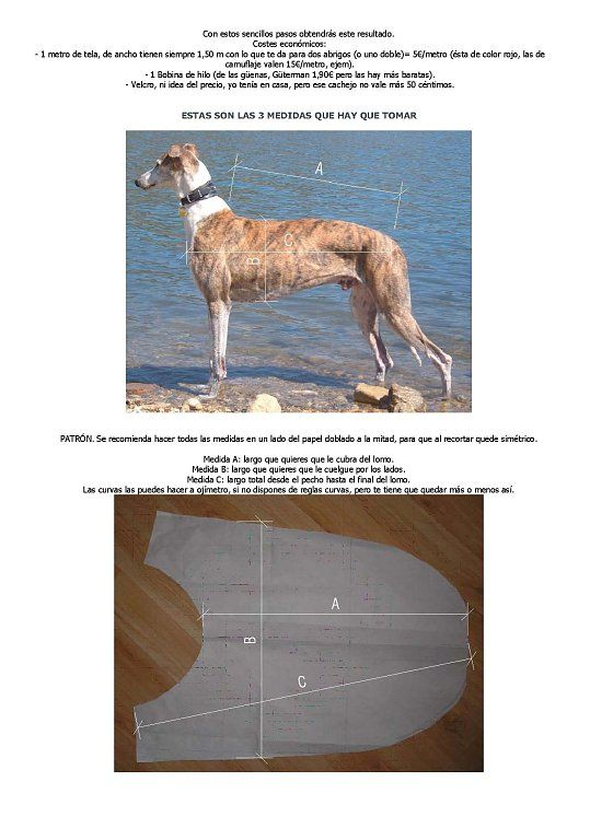 Patron Para Manta Perro Buscar Con Google Trajes Para Perros Abrigos Para Perros Abrigo Para Perro
