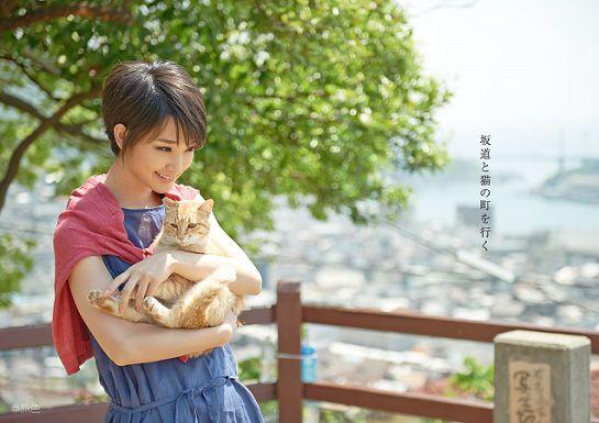 猫を抱っこする剛力彩芽