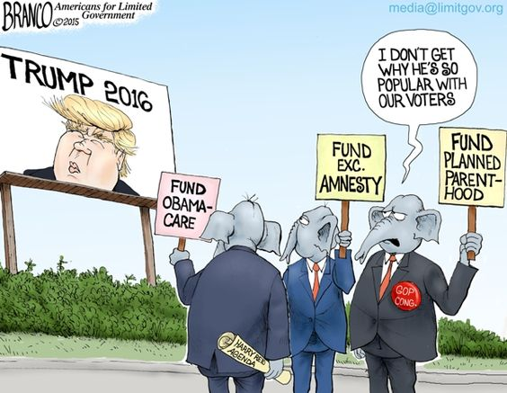 Image result for good government and Trump cartoon
