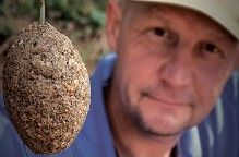 Forget PVA bags: Think Method The forgotten art of high-attract fishing - the Method feeder