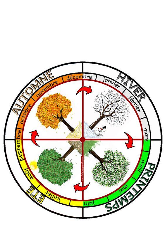 Affichage LA ROUE DES SAISONS : constituer une roue avec les 4 saisons ainsi que leur répartion selon les 12 mois de l'année