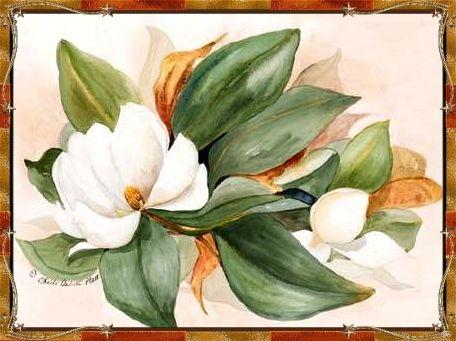 The White Magnolia Tree Poem