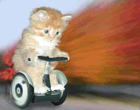 Zie me racen hahhahha Hou jij mij bij?