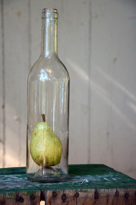 pear in a bottle. beautiful.