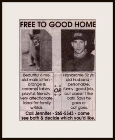 Too funny: Free to Good Home -- Which One Would You Choose? | Content in a Cottage