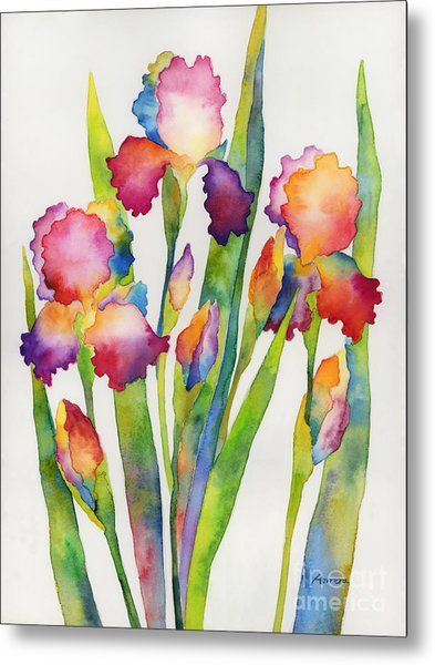 Iris Elegance Metal Print By Hailey E Herrera In 2020 Iris