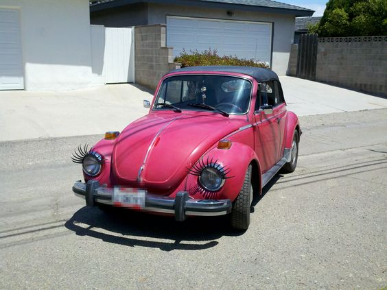 I want a bug so I can do this!!!!!!!!!!