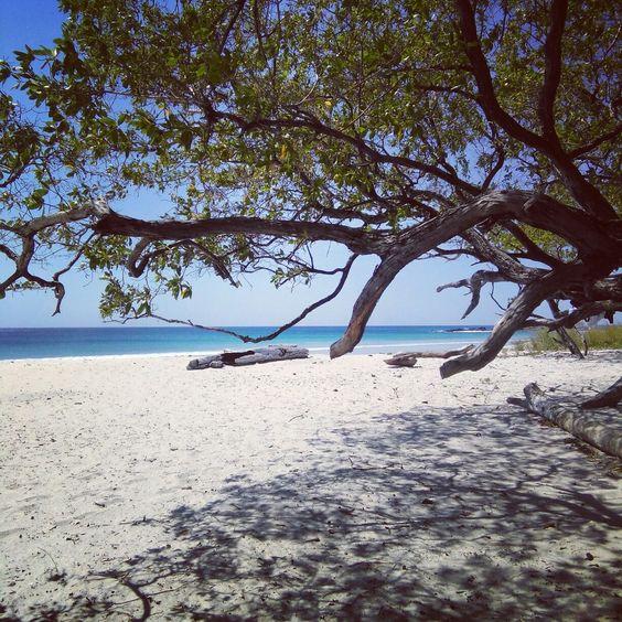 Playa Barrigona!