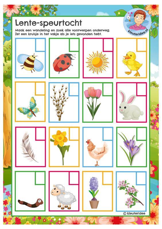 Maak bij mooi weer samen een wandeling of ga in je tuin op zoek naar al deze planten en dieren. Zet er een kruisje bij als je het gevonden hebt!