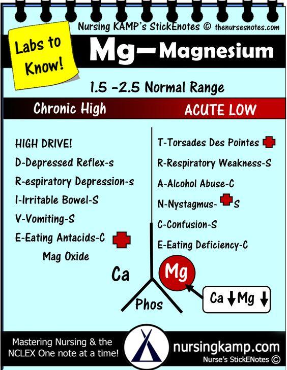 acid and magnesium essay