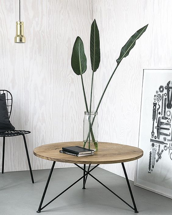 Leaves only flora pinterest beautiful banana plants for Sofa table for plants