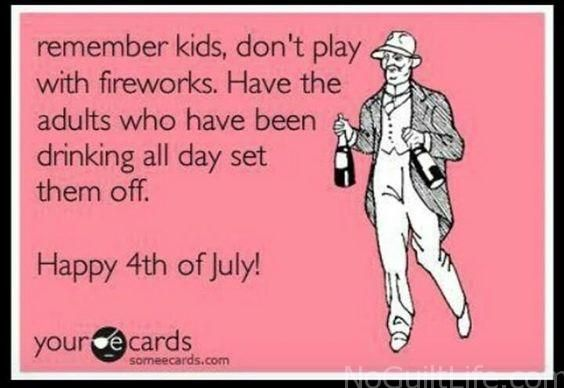 Funny 4th Of July Memes No Guilt Life Funny 4th Of July Fourth Of July Quotes Funny Picture Gallery